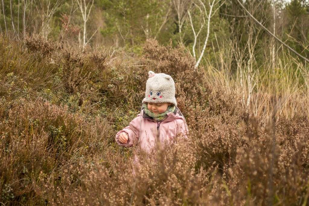 Nachhaltigkeit Wanderblog a daily travel mate