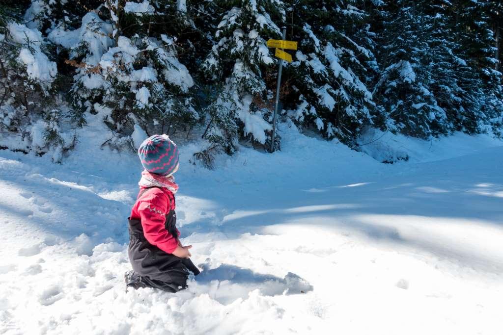Wandern mit Komoot und Kind Schwarzenberg