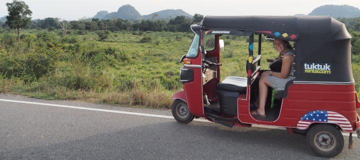 Elternzeitreise: Mit dem Tuk Tuk durch Sri Lanka