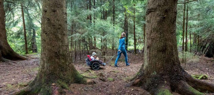 Spielen im Wald: 10 Spielideen für Kinder unter Baumkronen